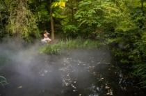 Bathing in the Mist