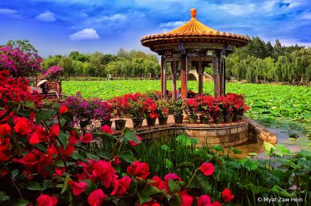 Kuming City Garden