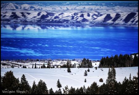 ~ Bear Lake Blues ~