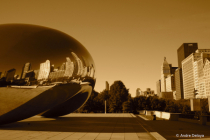 The Bean, Nuff Said!