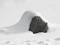 Snow Covered
