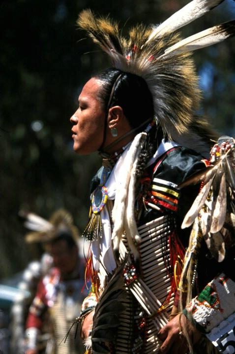 Native American Profile