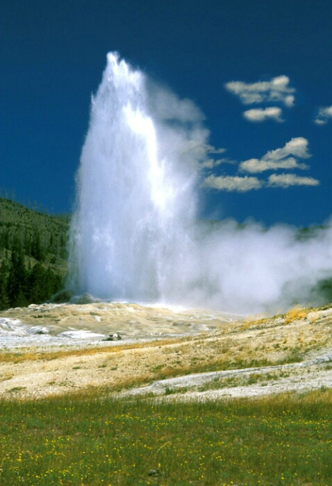 Ol Faithful, Yellowstone