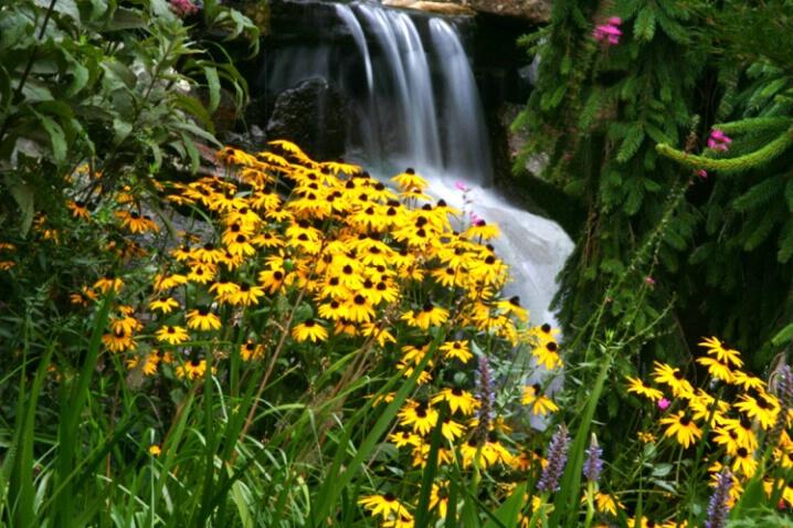 Cozy Falls