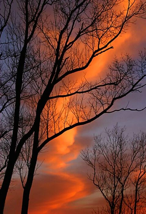 Mnt Air, sunrise looking west