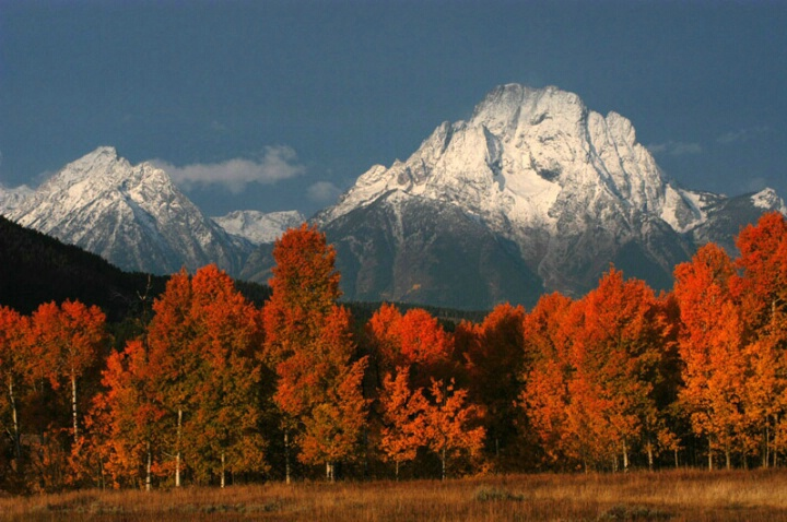 Oxbow Bend Autumn Colors