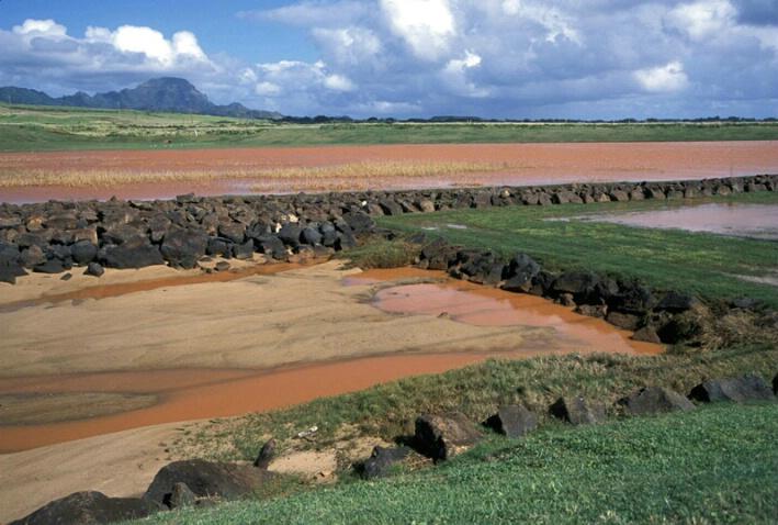 Fertile Red Dirt Runoff