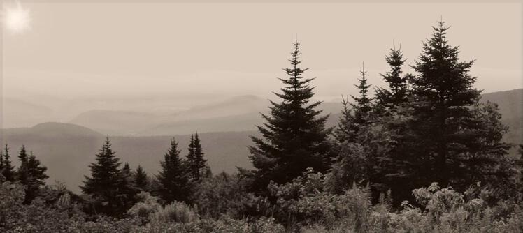 Mist Lifting on Mt. Greylock