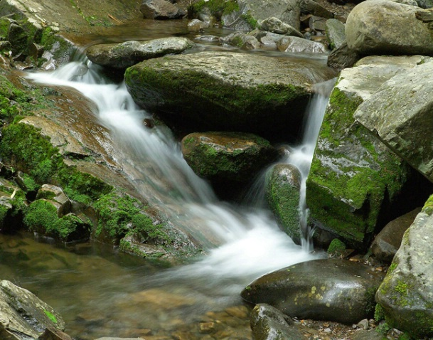 Stream and Falls