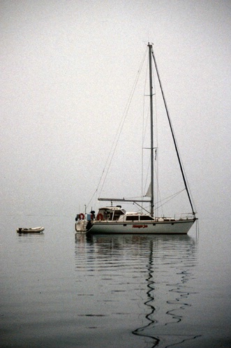Misty mooring NZ