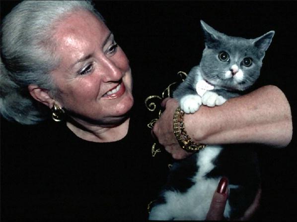 Jackie & kitten