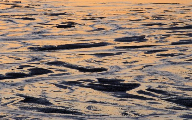 Shoreline at Daybreak