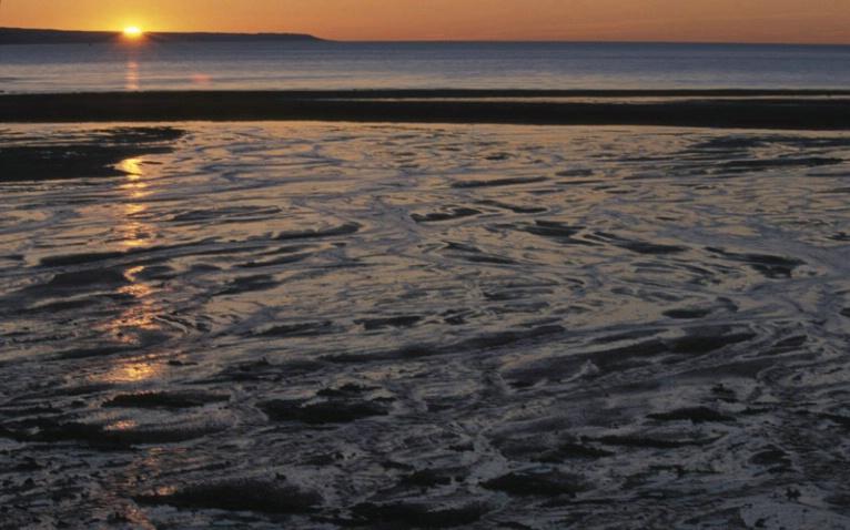 Daybreak on the Bay