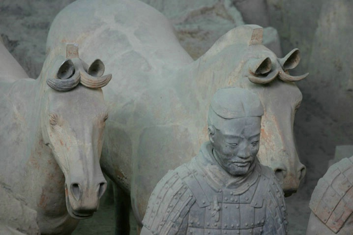 Horses and Warrior