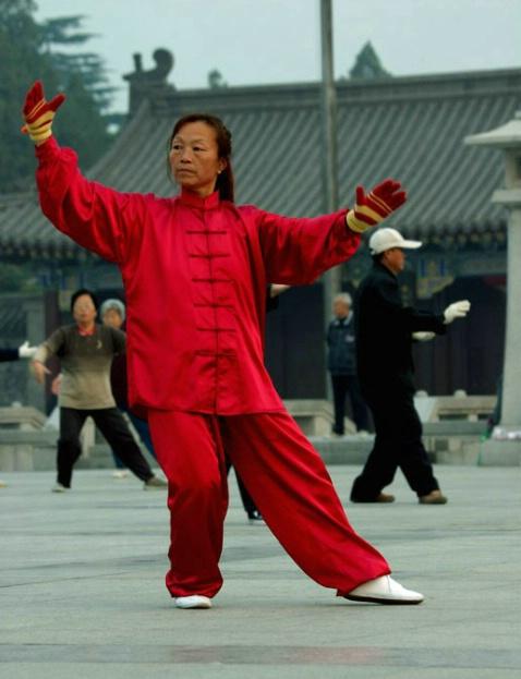 Tai Chi Leader
