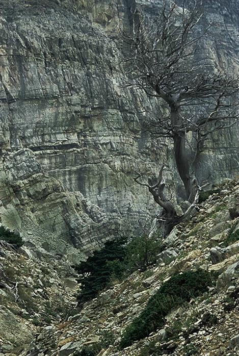 Akipuni Canyon