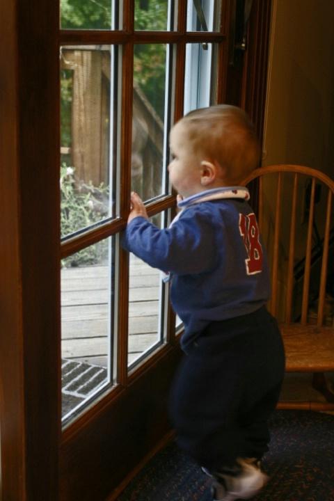 In the window pane