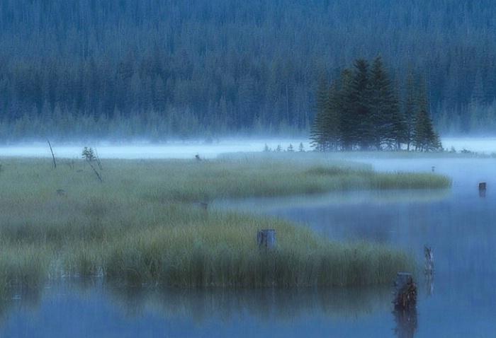 Quietude - Canadian Rockies
