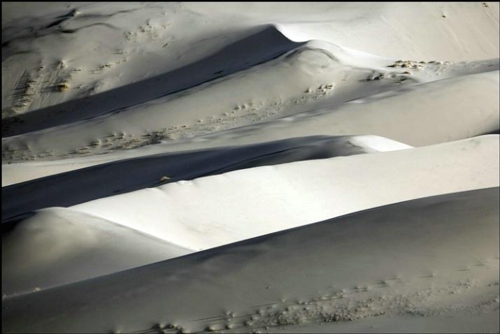 dune shadow 1
