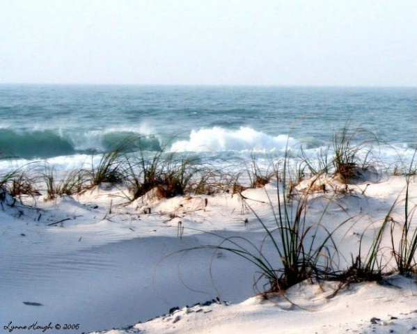 Pensacola Beach March 2006