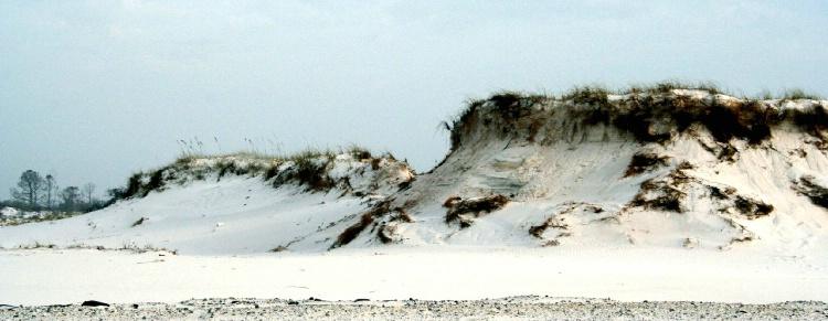Dunes on Pensacola Beach