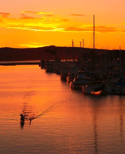 DP harbor sunrise paddler