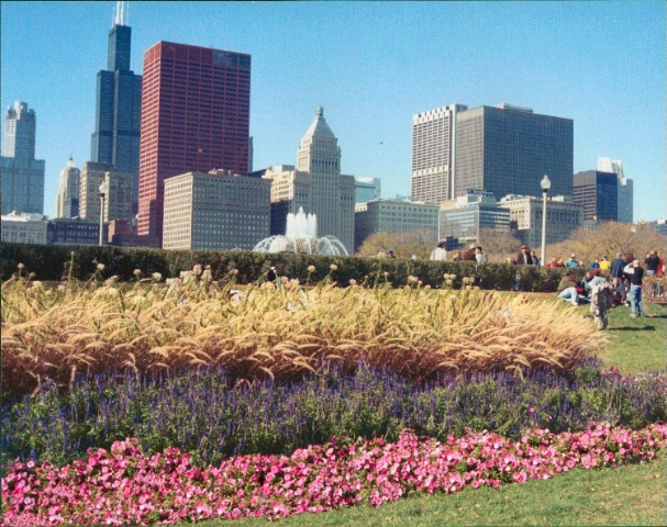 MY KIND OF TOWN, CHICAGO!