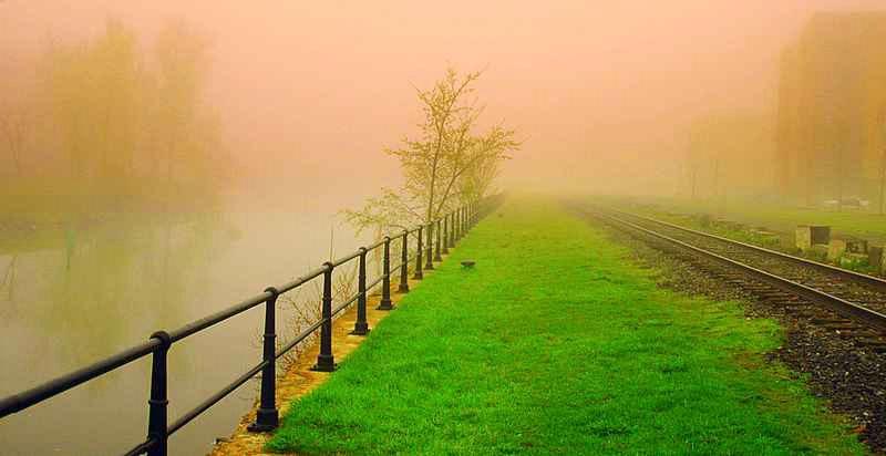 Fog on the canal
