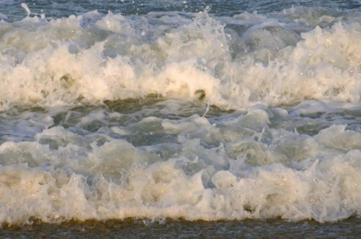 Ocean Meets Shore