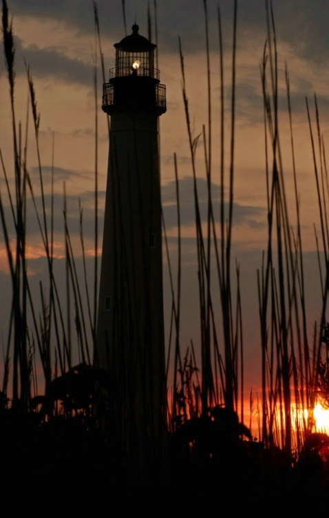 Cape May Lighthouse with Grass