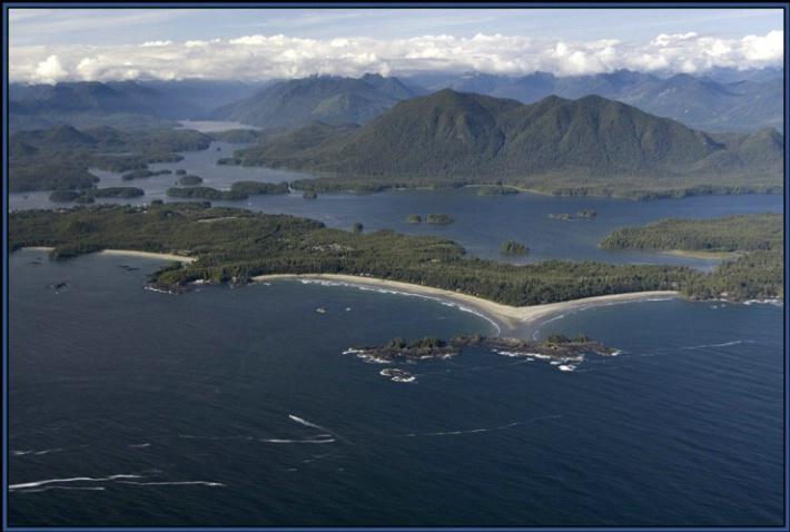 Chestermans Beach from air