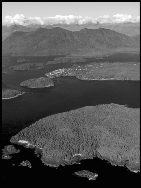 Tofino from air 1