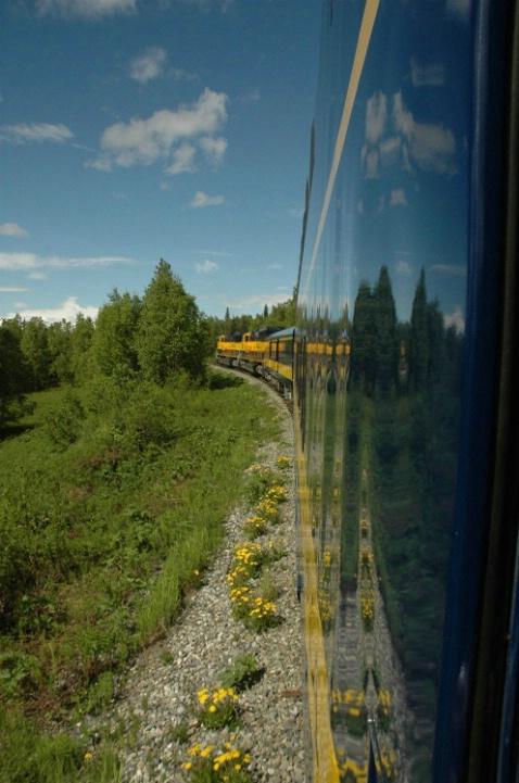 Alaska Train Reflection