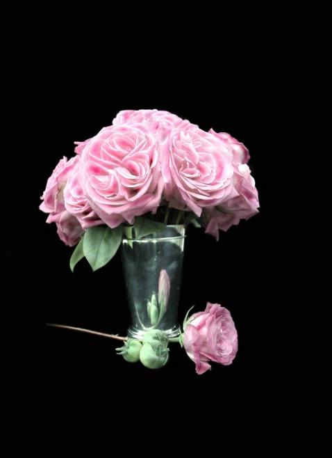 Roses & Silver Vase