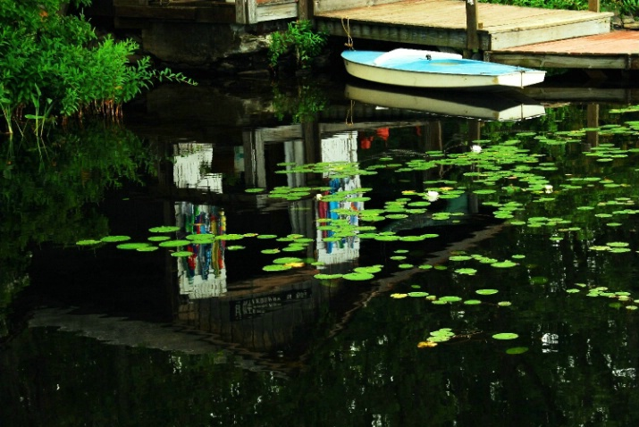 Boathouse Relections