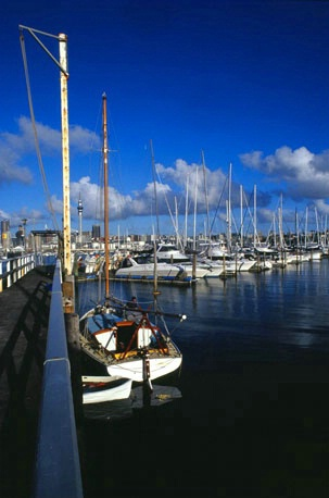 Yacht at the dock Westhaven Marina Auckland NZ
