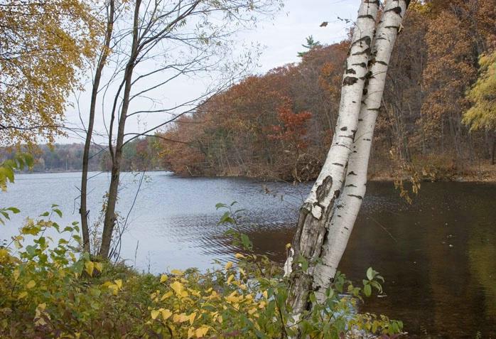 Crystal Lake NY