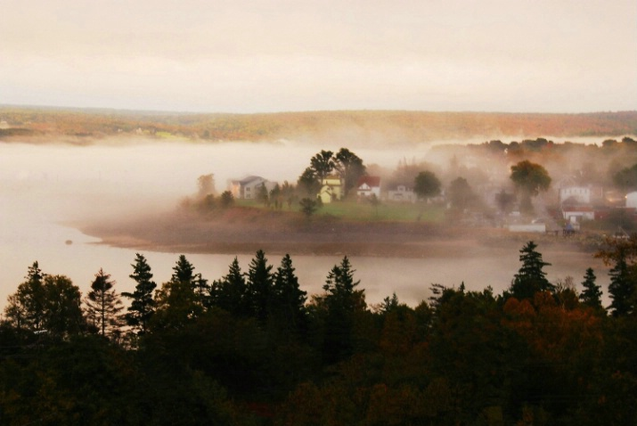 Fundy Morning