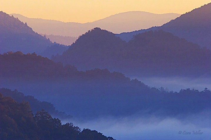 Piercing the Darkness - Smoky Mountains