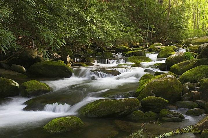 Wash Your Cares Away - Smoky Mountain Nat'l P