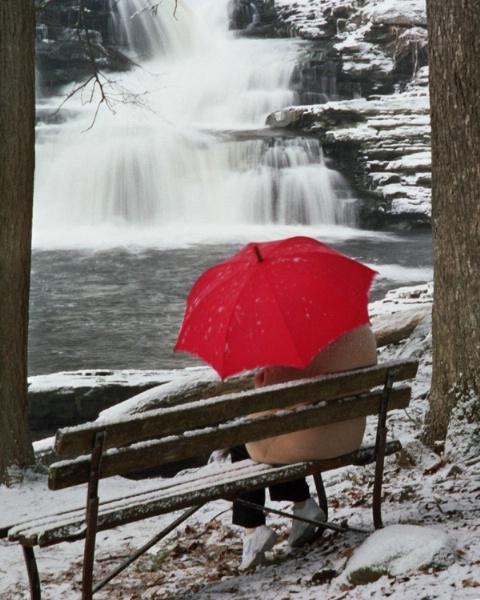 """Winter Watch"";  Nikon N80 (film); late wi"