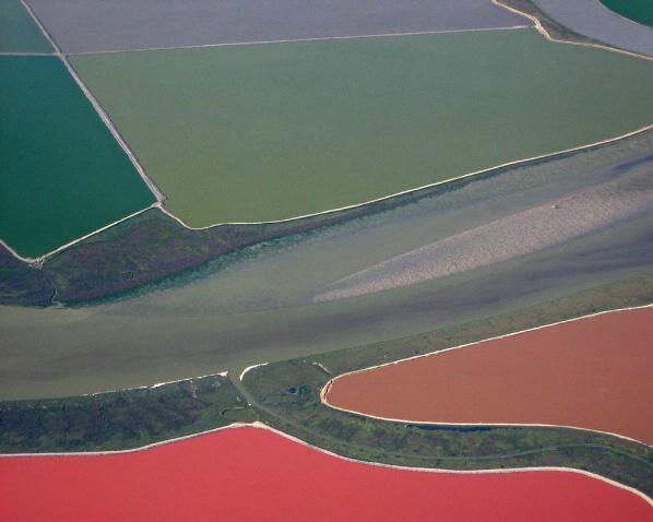 Salt Flats, San Francisco Bay