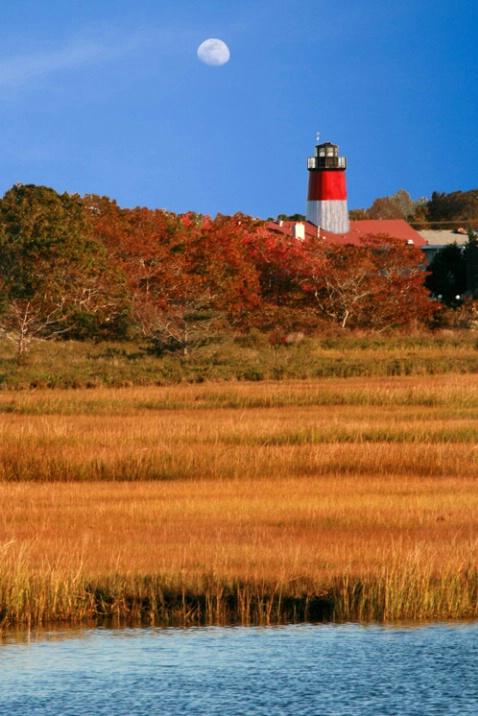 Lighthouse over marsh, Cape Cod