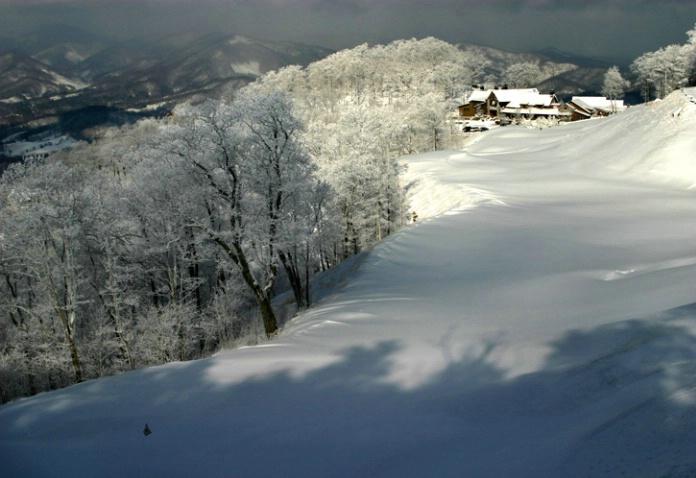 winter at num 1