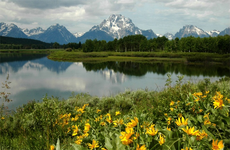 Inspiration at Oxbow Bend