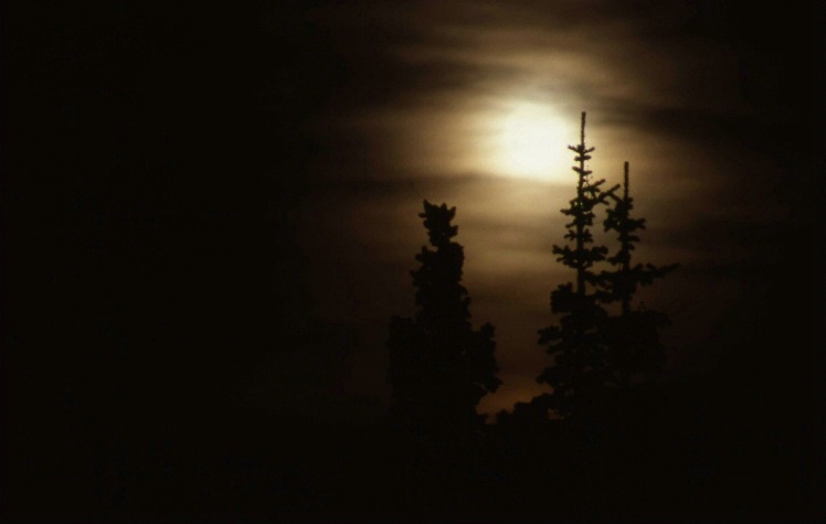Moon Rise - Rocky Mountain National Park - Colorad