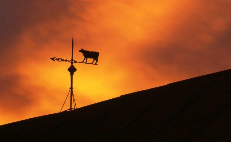 Stalp Farm - Beemer - Nebraska