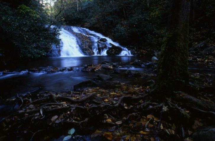 Deep Creek - Great Smoky Mountains N.P. - N.C.