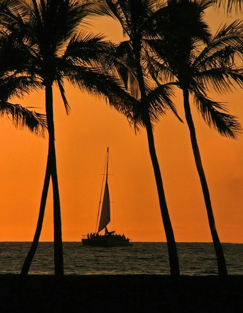 Sailing through Paradise