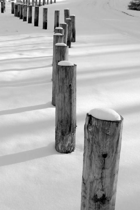 Snow & Posts